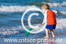 Ostsee Pressebild: Buddel- und Badespaß an der Ostsee