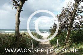 Ostsee Pressebild: Herbstlicher Ostseestrand