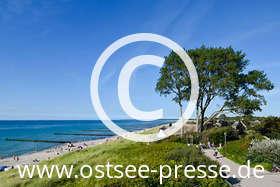 Ostsee Pressebild: Windflüchter an der Ostsee
